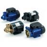 Lowara P - PKM - PM - 16-30-40-60-70 /B/A - Peripheralrad-Pumpe